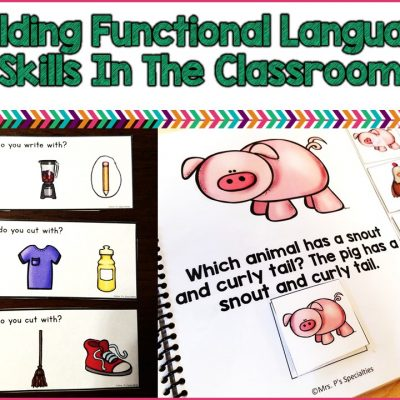 Building Functional Language Skills In The Classroom