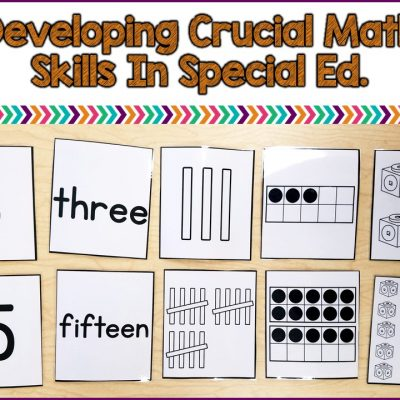 Developing Number Concepts in Special Ed.