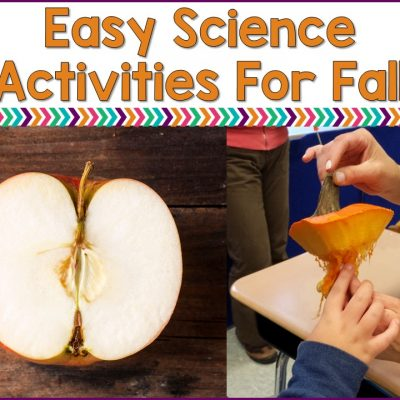 Easy Fall Science Activities For Special Education Classrooms