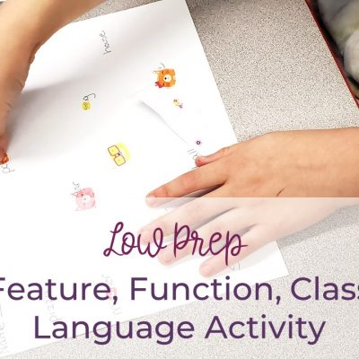 Feature, Function, Class Activity- Low Prep
