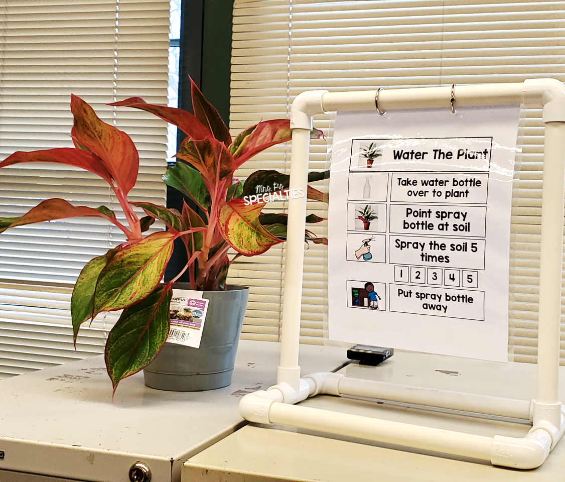 example of visual for watering a plan